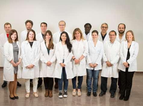 Imagen cedida de los investigadores de la Universidad de Murcia (UMU), del Instituto Valenciano de Infertilidad (IVI) y del Instituto Murciano de Investigación Biosanitaria (IMIB).