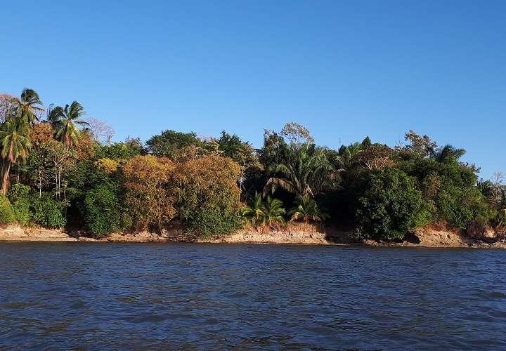 Pescadores encuentra osamenta en un paraje solitario del distrito de Mariato