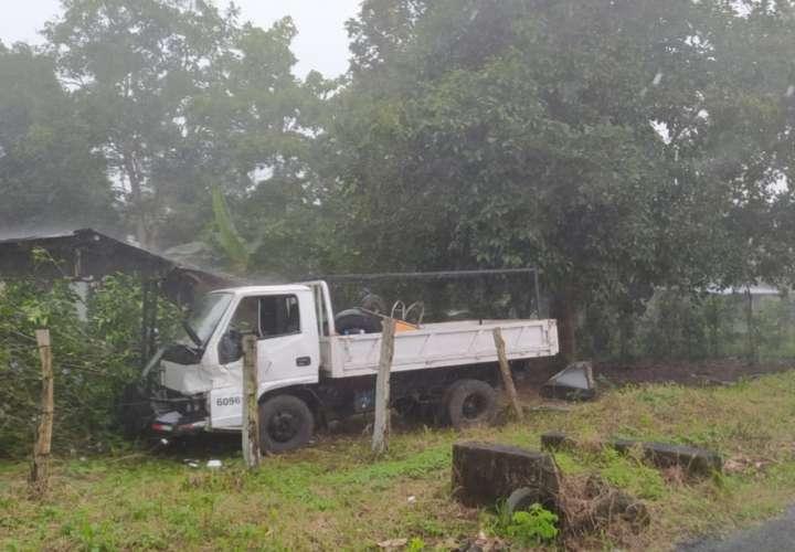 Conductor pierde control de camión por ataque de abejas y mata a peatón