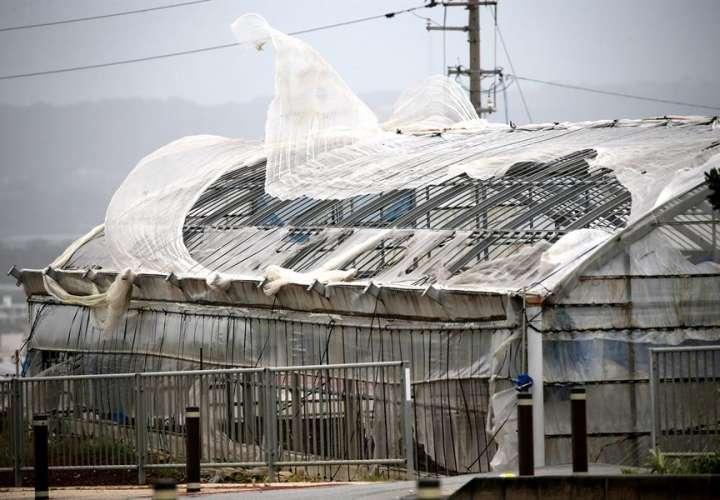 El potente tifón Maysak dejó decenas de víctimas en Corea del Norte