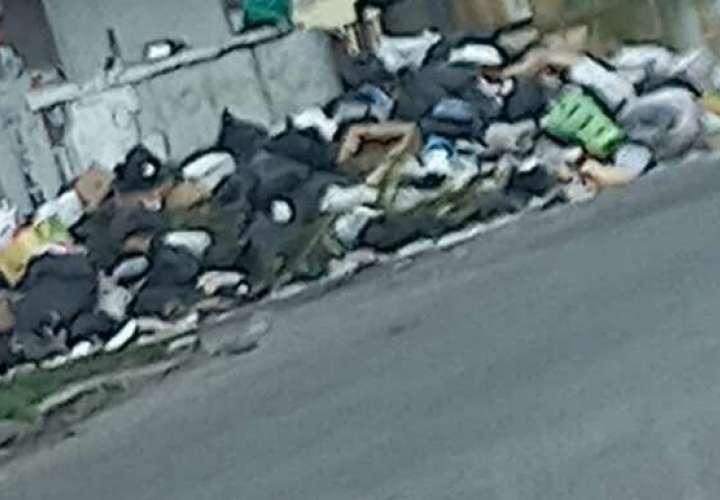Ciudad ahogada en basura. Trabajadores de aseo quieren negociar con Presidente