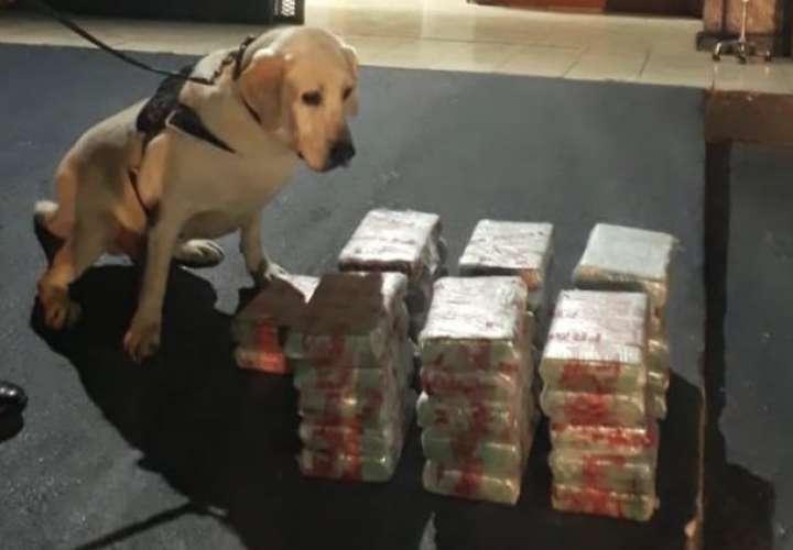Confiscan 32 paquetes de sustancia ilícita dentro de auto en Chame
