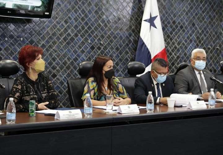 La Comisión de Gobierno acogió la objeción recomendada por el Ejecutivo y se eliminó el artículo 227 del Proyecto de Ley 544 de Reformas Electorales.