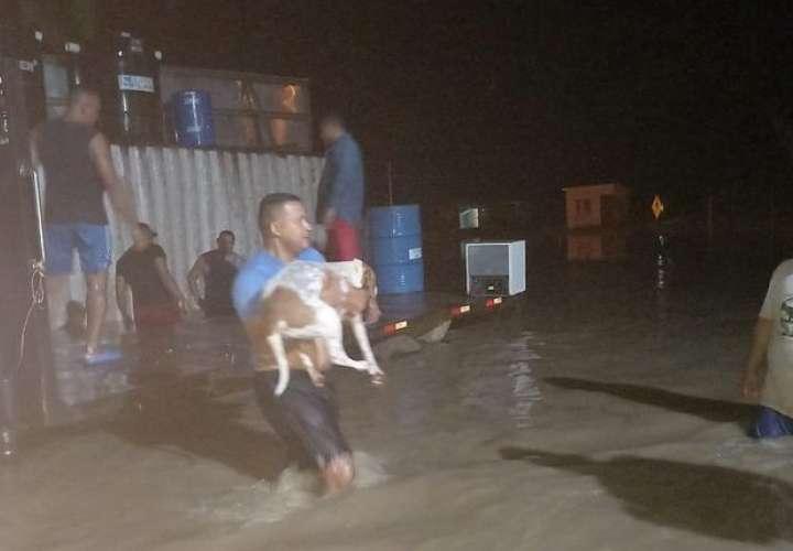 Familias darienitas afectadas por lluvias y desborde de río Zapallal [Video]