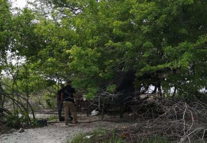 Investigan devastación de mangles en áreas protegidas de Punta Chame