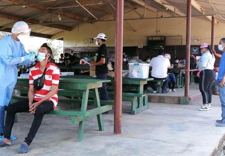 Este fin de semana, un grupo de 178 trabajadores llegaron hasta el distrito de Santa Maria, en la provincia de Herrera.