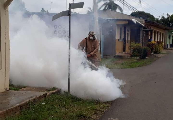 El dengue, en aumento