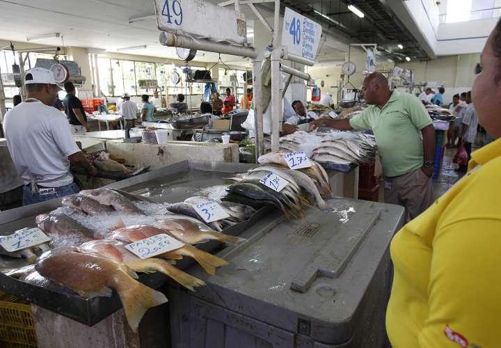 Panameños buscan mariscos para cena de fin de año