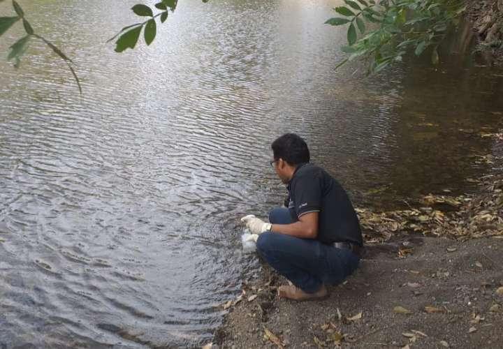 Preocupación por contaminación del río Guararé