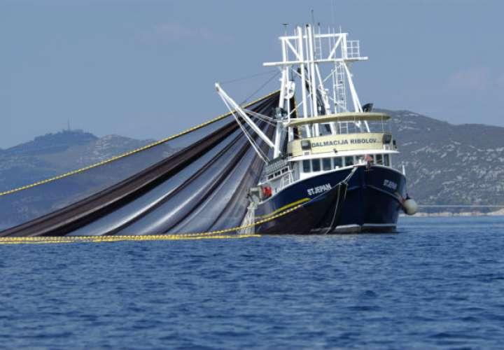 Suspenden temporalmente actividades pesqueras industriales
