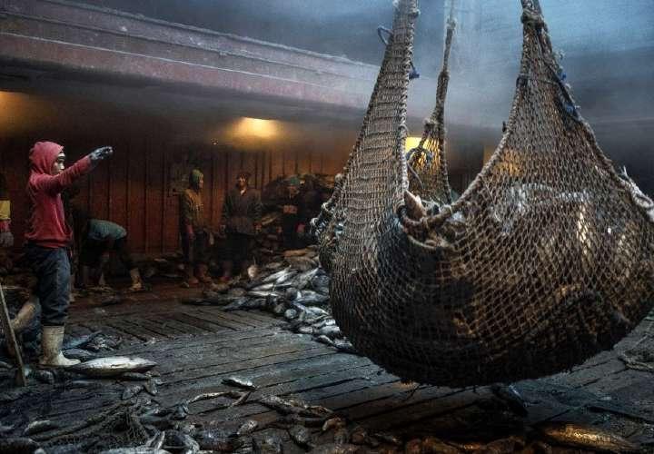 Panamá alerta ante pesqueros chinos