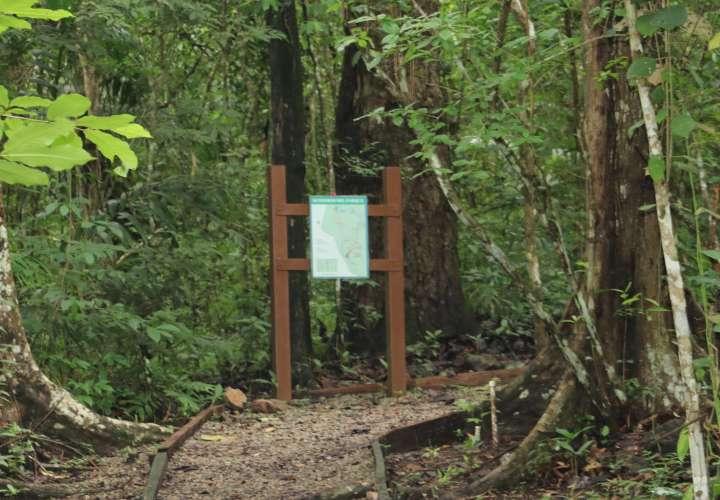 Parque Nacional Metropolitano se prepara para recibir visitantes