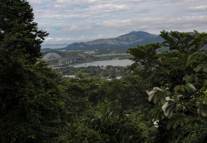 Cortizo plantea alianzas con países de América en contra del cambio climático