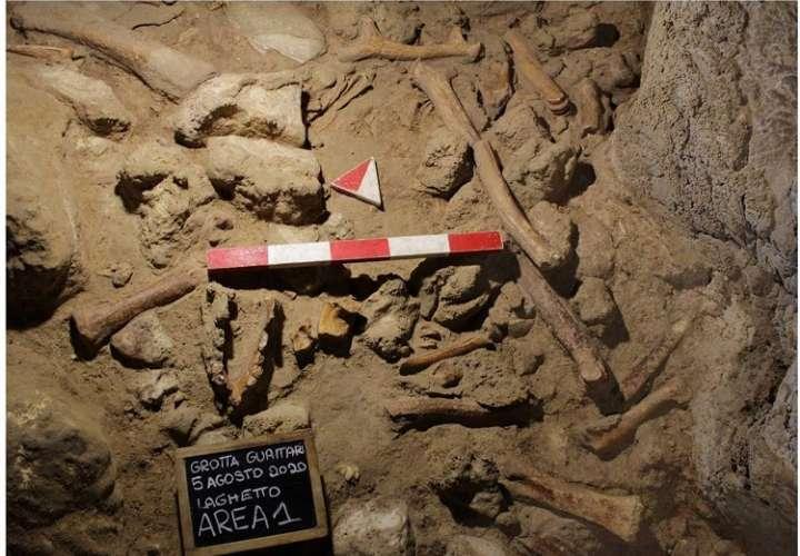 Hallazgo excepcional de restos de homínidos y animales en una cueva italiana