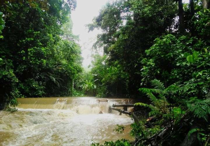 Tres plantas potabilizadora  afectadas por lluvias en Chiriquí