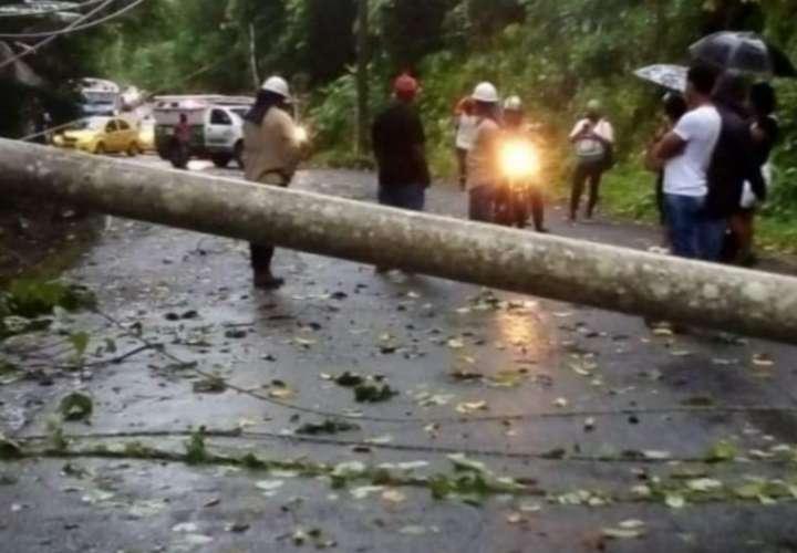 Mal tiempo deja caída de postes, árboles y deslizamiento en Colón