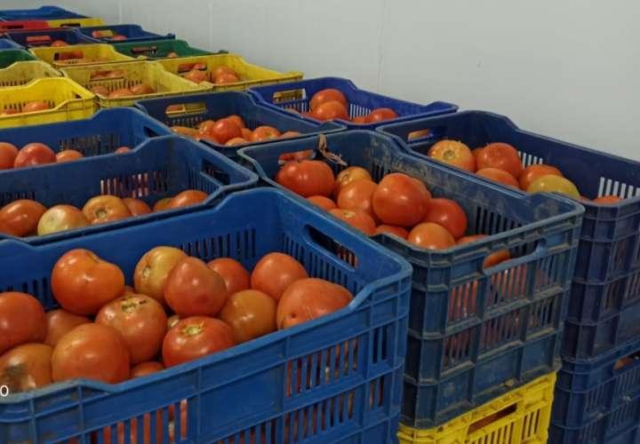 Decomisan cajas de tomate de contrabando