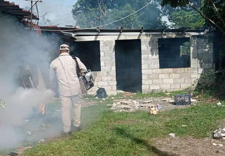 Minsa declara alerta en David y Barú por el aumento en los casos de dengue
