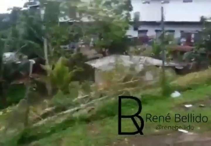 Familia se lleva un buen susto en Colón tras la caída de un árbol (Video)