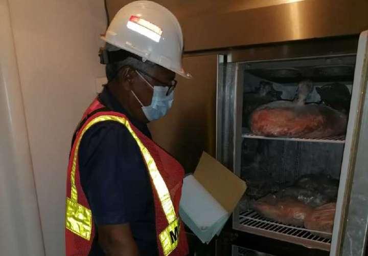 Detectan carne de cerdo proveniente de país con Peste Porcina Africana