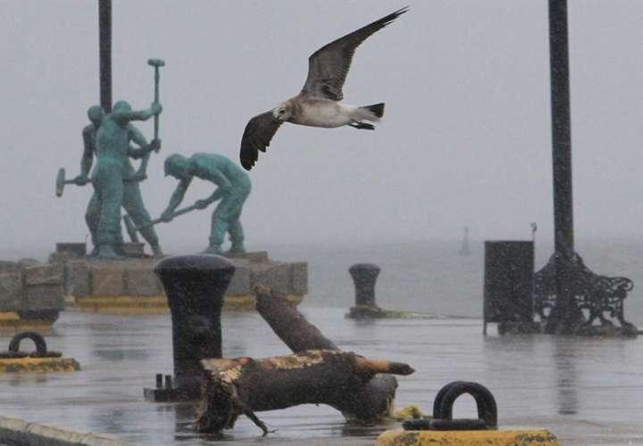 Vista de una fuerte tormenta en Veracruz (México). EFE