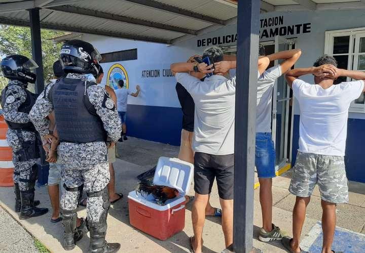 Fiesta en gallera clandestina termina con retención de 7 hombres