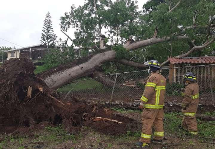 Segundo día de lluvias deja afectaciones en la península de Azuero