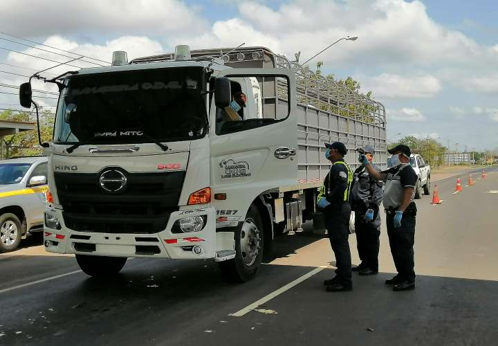 Controlarán con registro camiones que entren a Los Santos