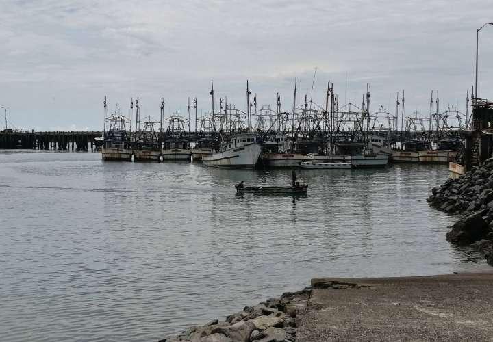 Buscan reactivación económica en Panamá Oeste