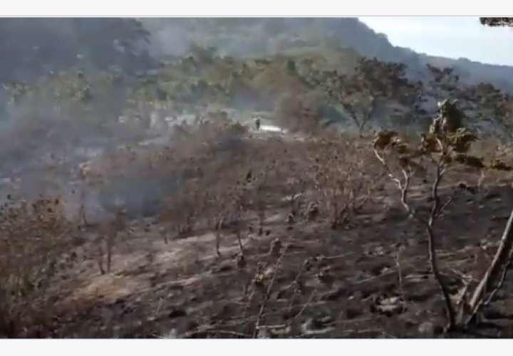 Incendio en Panamá quema 140 hectáreas de un bosque cerca a Costa Rica