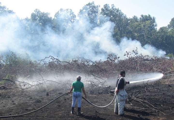El año pasado se registraron 417.7 hectáreas afectadas por el fuego.