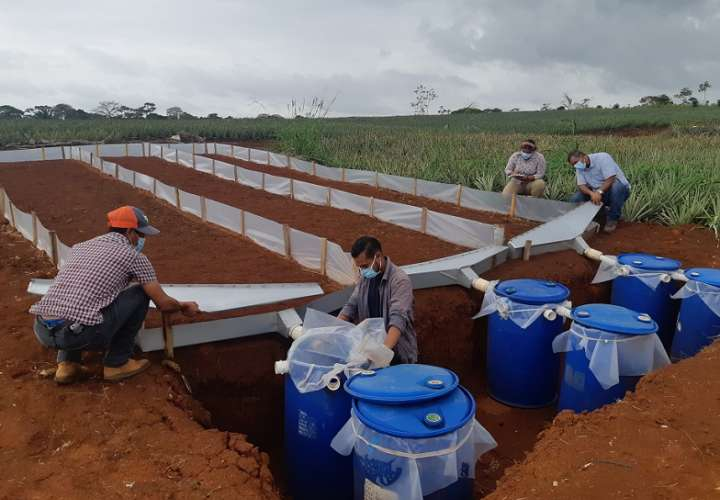 Los investigadores del Idiap realizarán el monitoreo periódico de estos procesos en los campos agrícolas y ganaderos de este sector.