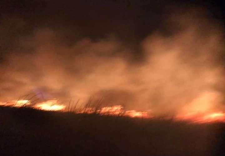 Bomberos combaten incendio de masa vegetal por más de 6 horas en Veracruz