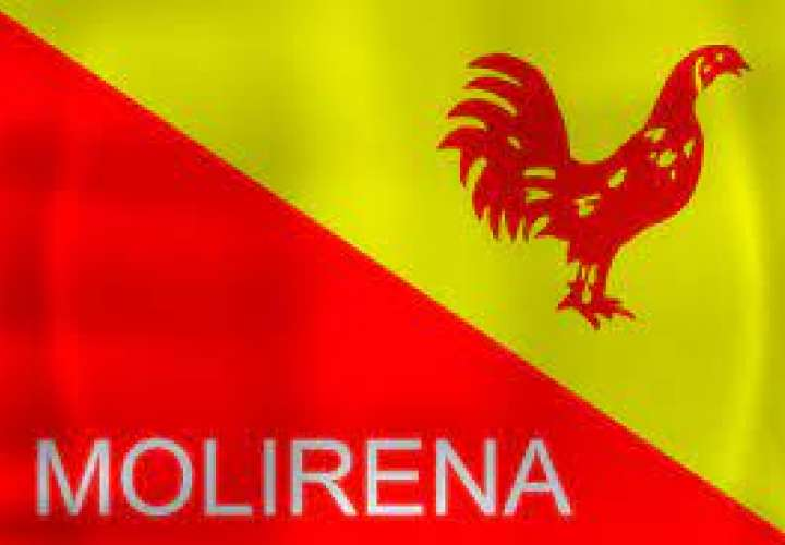 Molirena interpondrá denuncia por uso de nombre y símbolos del partido