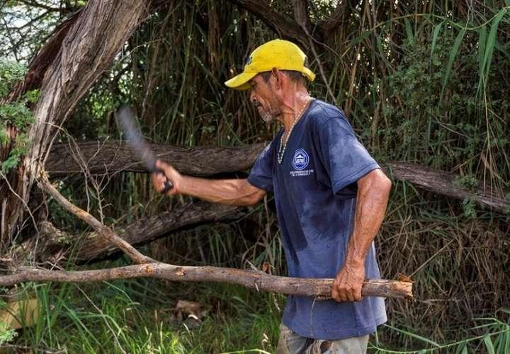 Pedro Tortosa cortar restos de árboles en Maracaibo venezuela efe