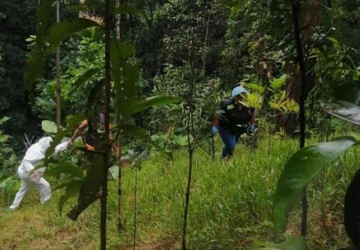 Inspección ocular en área de homicidio en Colón