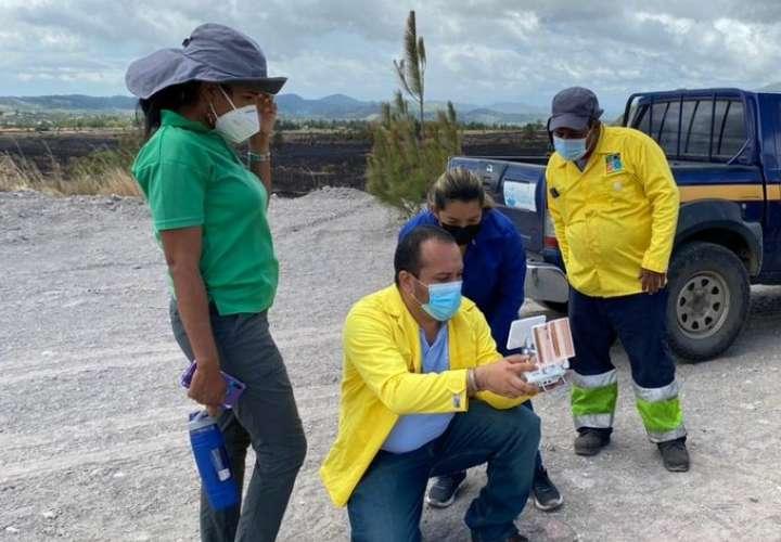 Evalúan daños causados por incendio de masa vegetal en Tierras Altas