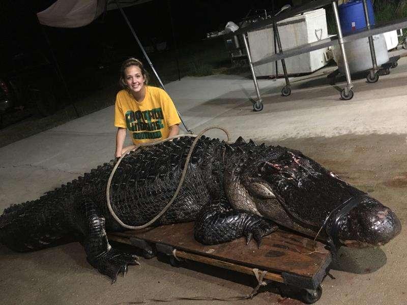 La joven Kelby  posa con el gigantesco caimán de más 3,6 metros de largo y 210 kilos de peso, que chocó con un camión con remolque mientras cruzaba una autopista interestatal, en el noroeste de Florida (EE.UU.). EFE/Vaughan Gators