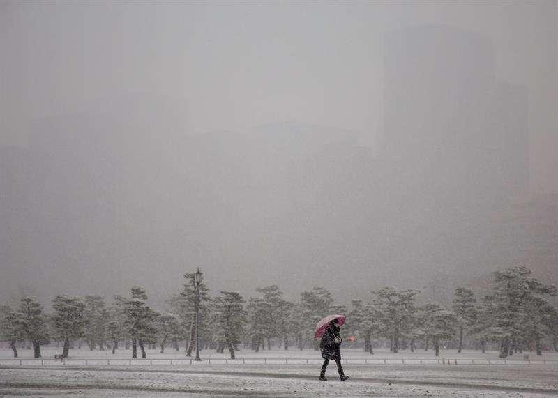Una mujer pasea por los jardines del Palacio Imperial completamente cubiertos por un manto de nieve, en Tokio, Japón. EFE
