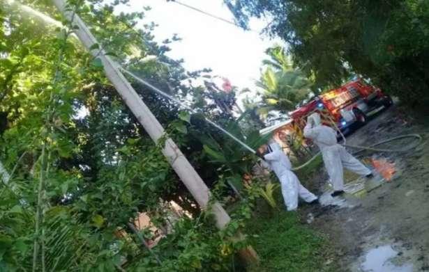 Se pudo conocer que la víctima residía en la comunidad de Veladero, Corregimiento de Chiriquí y laboraba en la finca donde se registró el incidente.  Foto: Mayra Madrid