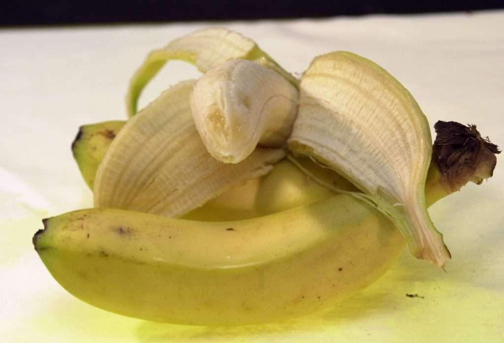 El guineo contribuye a aumentar la variedad de frutas en todas las estaciones/J.M. Aragón