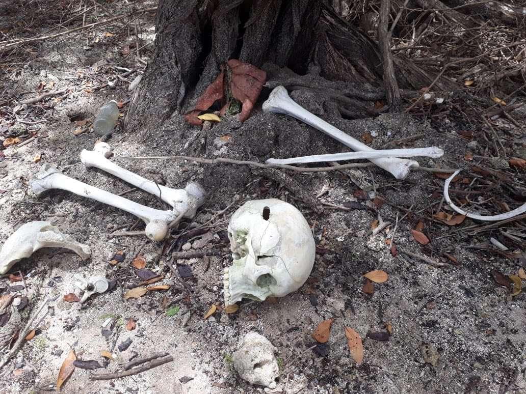 Vista general de la forma como fueron ubicados los restos humanos. Foto: @SENANPanama