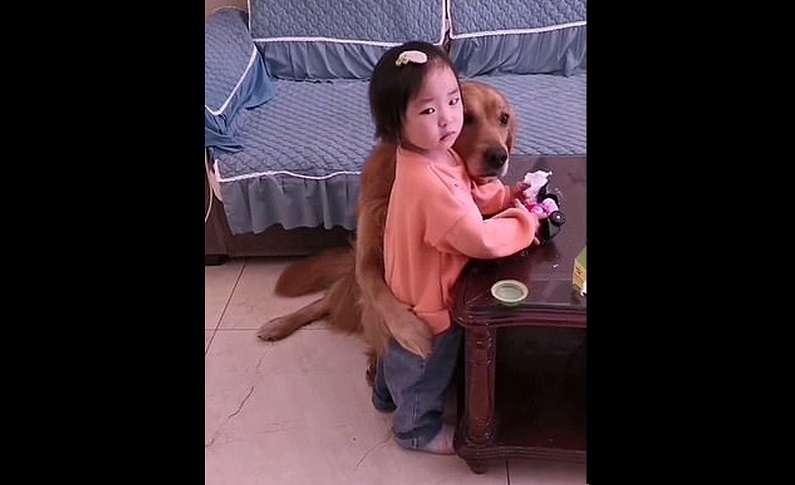 """El can le dio un tierno """"abrazo"""" a la niña."""