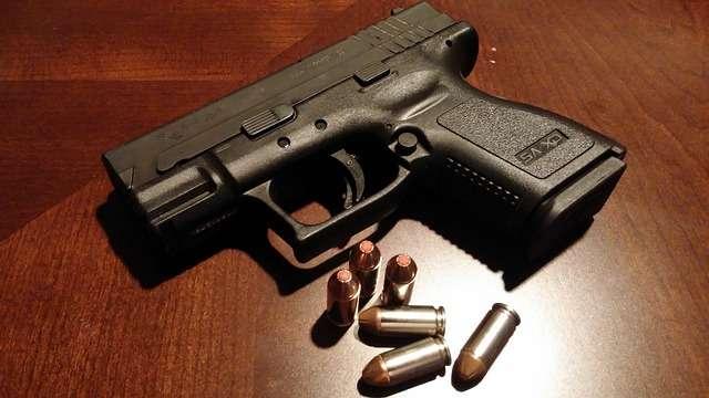 El decretó viola dos leyes nacionales, la Ley 57 de 2011, que es la ley de armas, que no permite establecer requisitos adicionales por decreto, y la ley 80 sobre ADN. Foto: Pixabay Ilustrativa